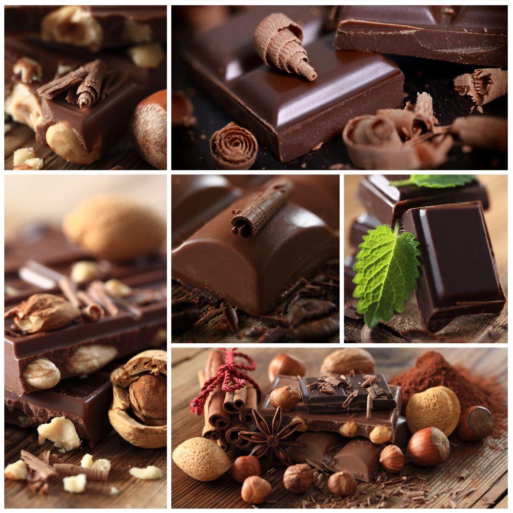 Schokolade für Westie