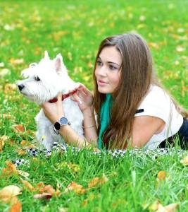 Steckbrief West Highland White Terrier
