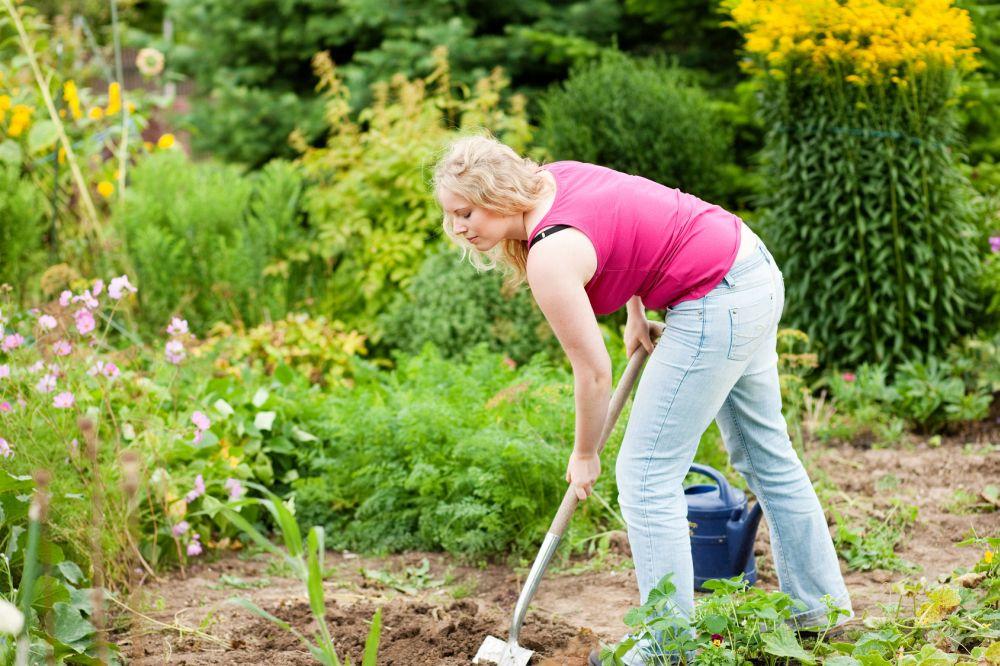 Meinen Westie im eigenen Garten vergraben. Worauf muss ich achten?