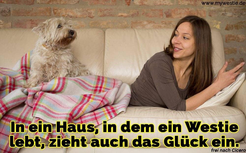 Eine Frau liegt auf dem Sofa mit ihrem Westie